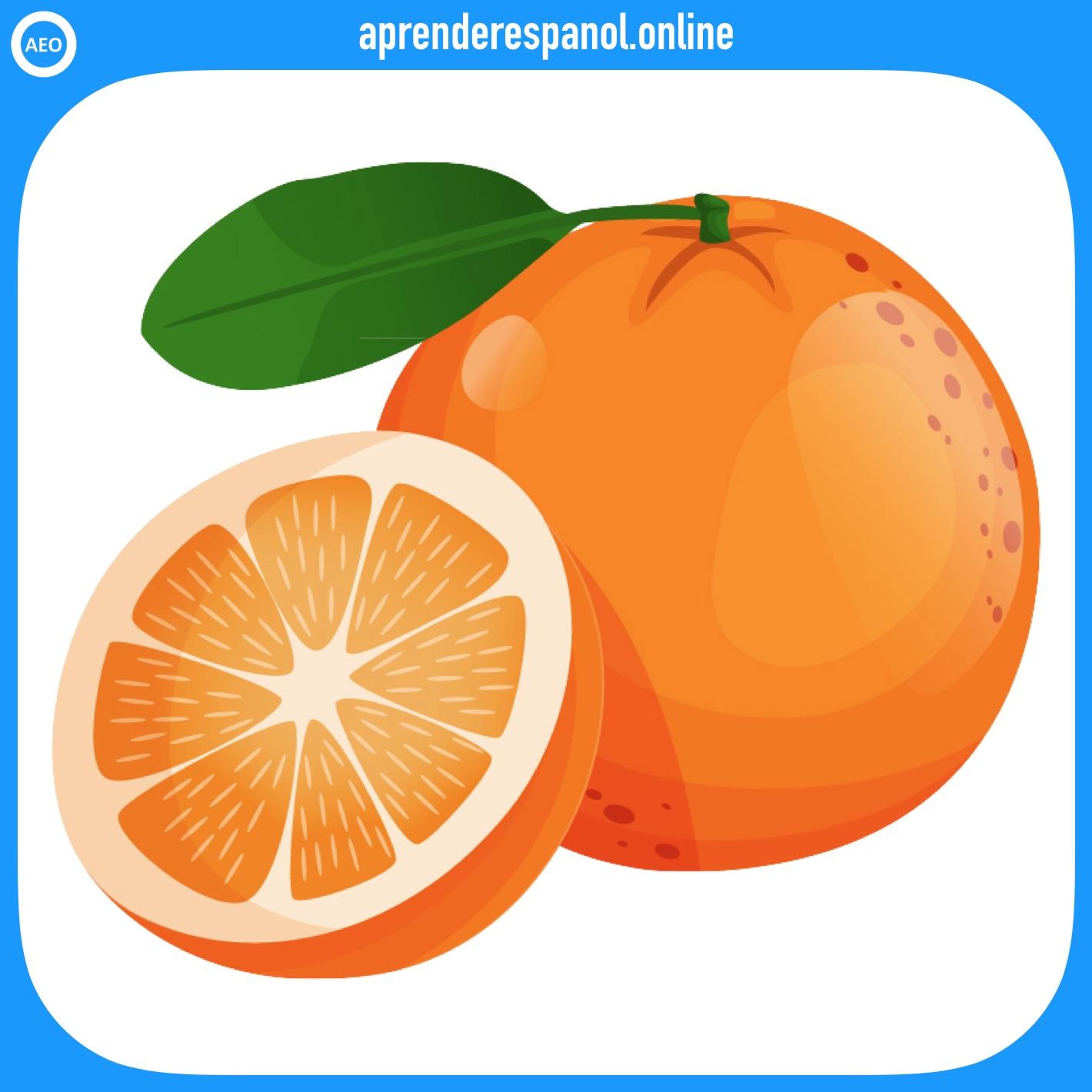 Ejemplo de colores: La naranja es de color naranja - Vocabulario de colores