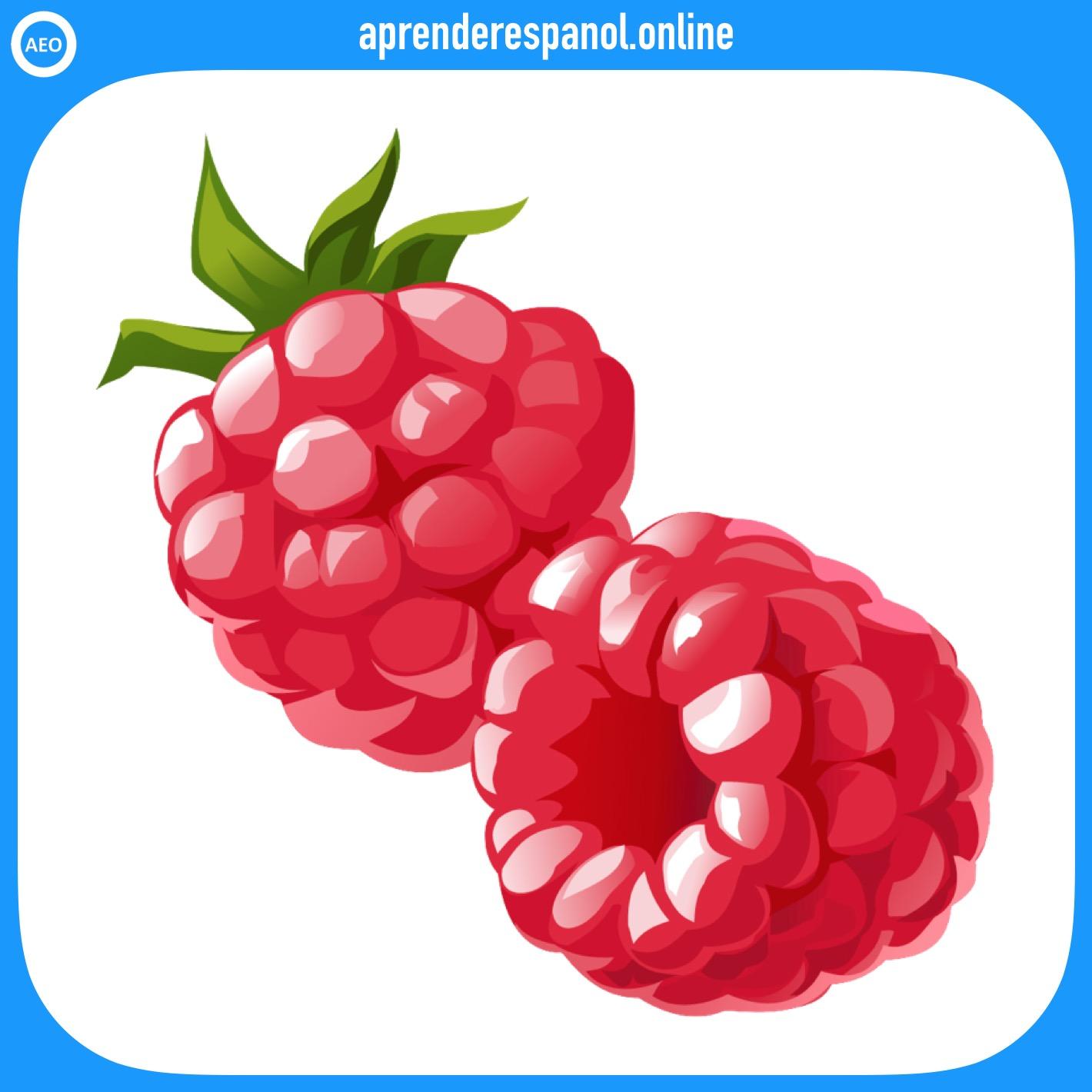 frambuesa - frutas en español - vocabulario de las frutas en español