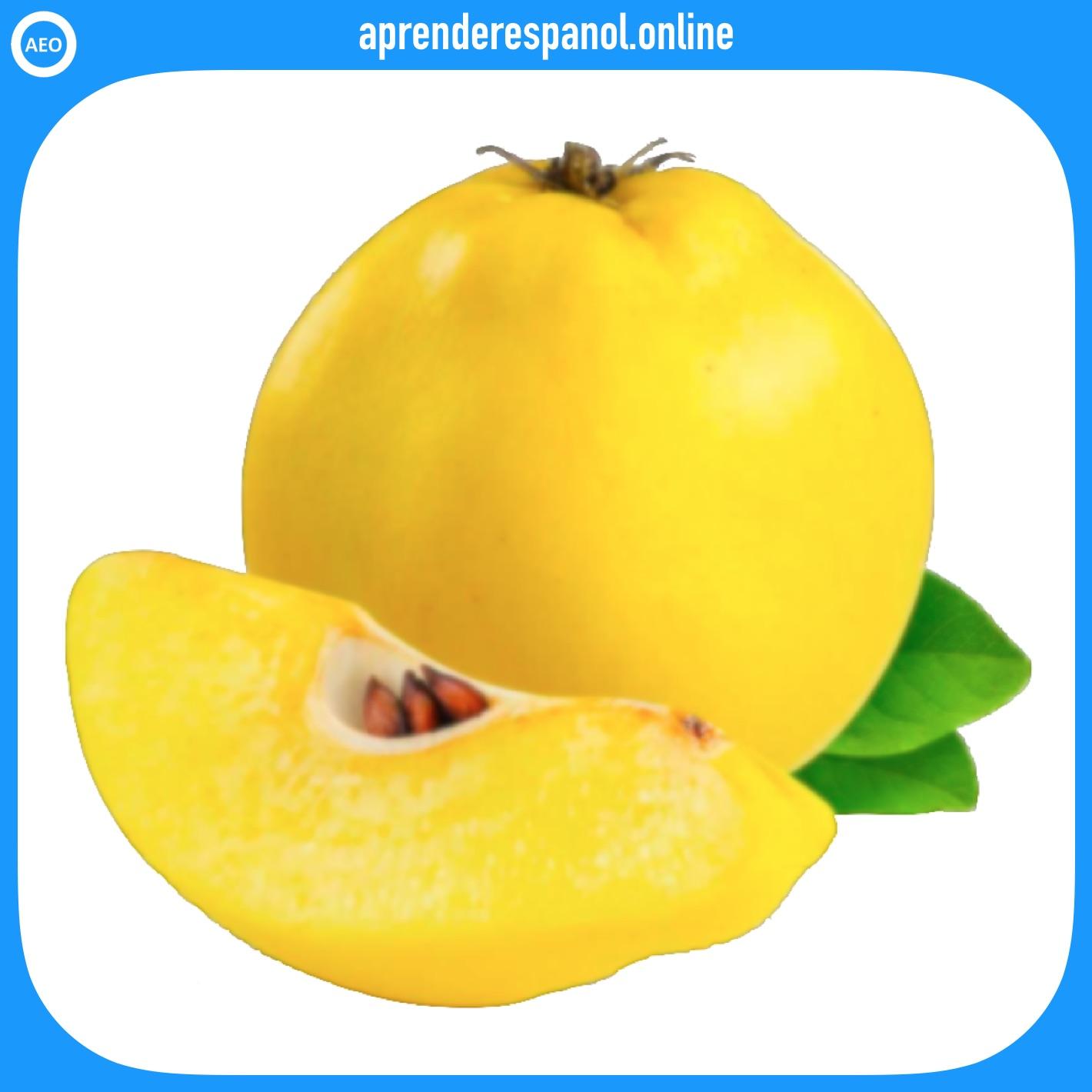 membrillo - frutas en español - vocabulario de las frutas en español