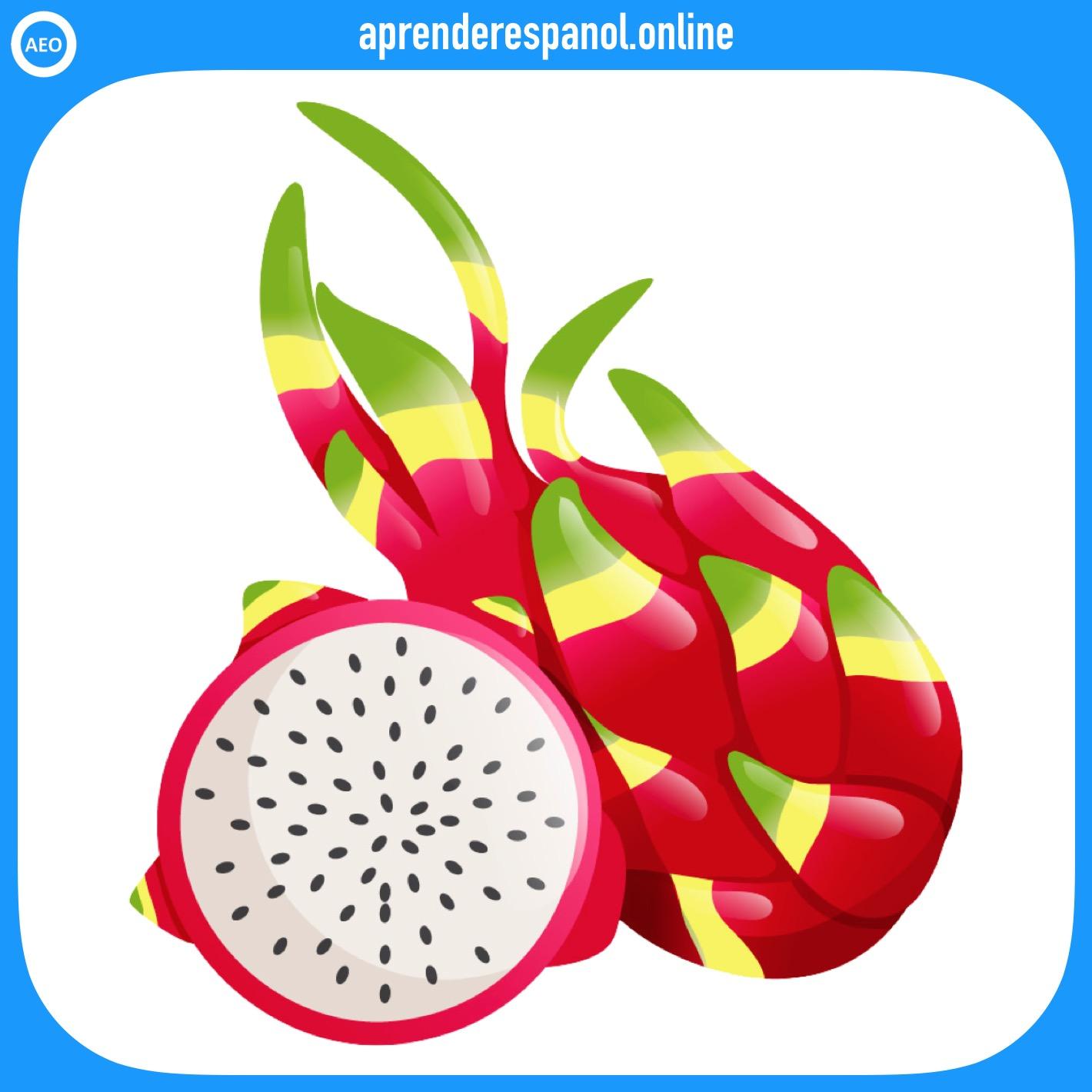 pitahaya - frutas en español - vocabulario de las frutas en español