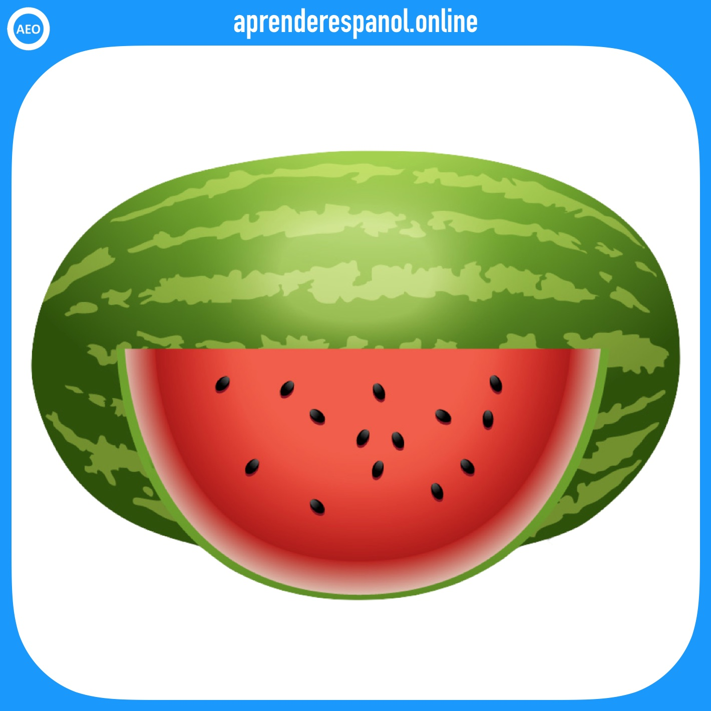sandía - frutas en español - vocabulario de las frutas en español