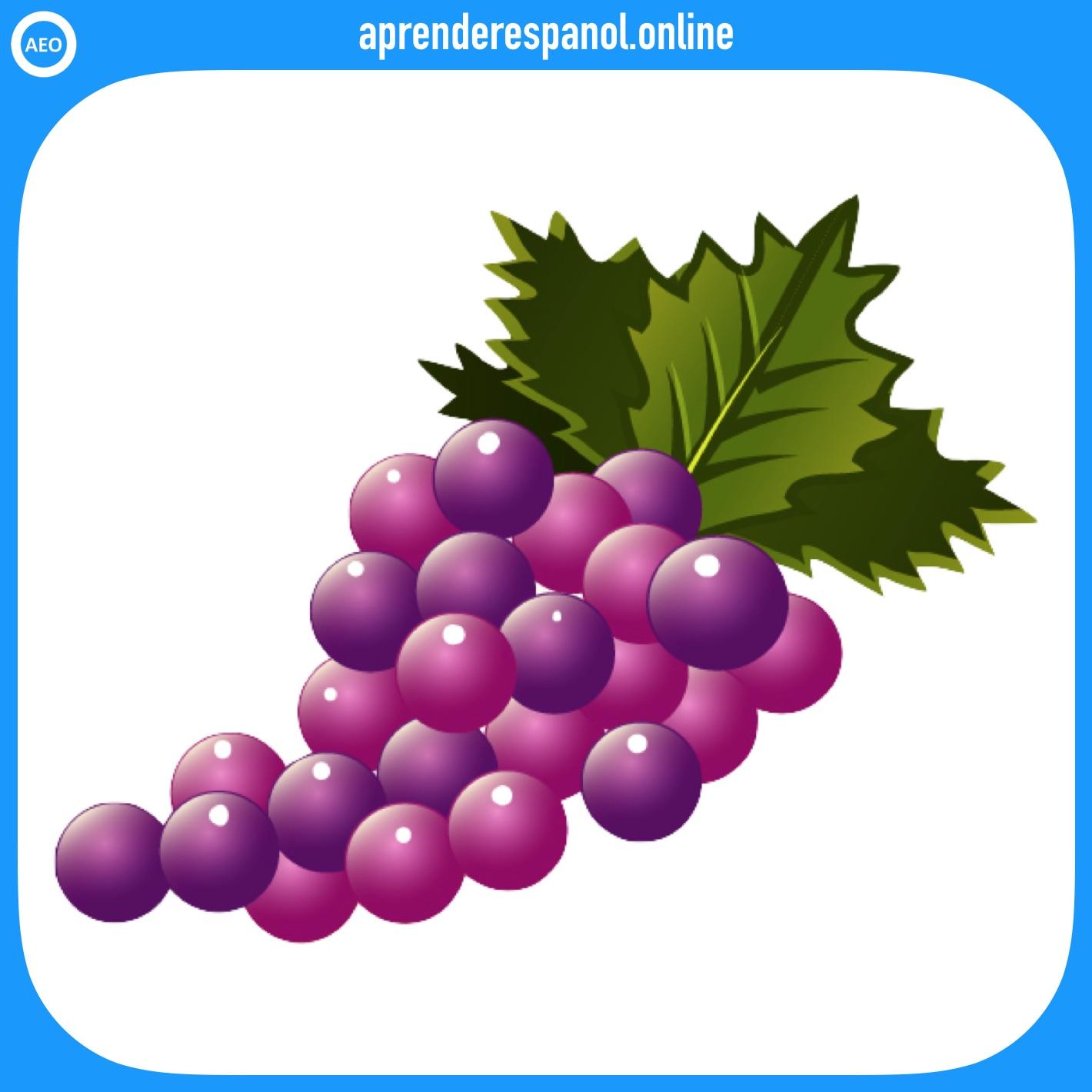 uva - frutas en español - vocabulario de las frutas en español