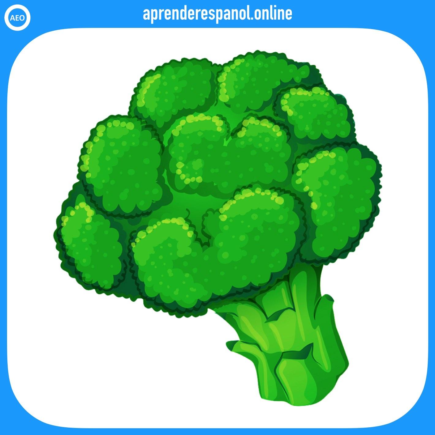 brócoli | verduras en español | vocabulario de las verduras en español