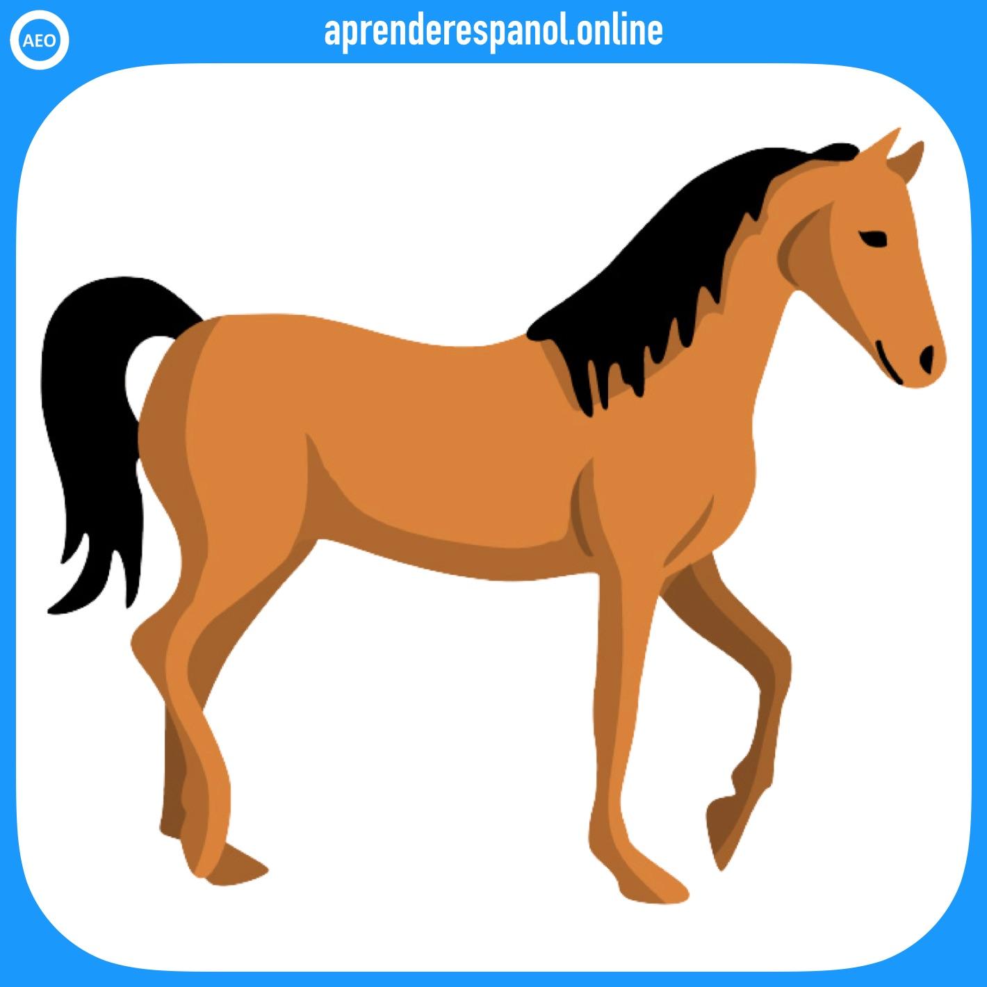caballo | animales en español | vocabulario de los animales en español