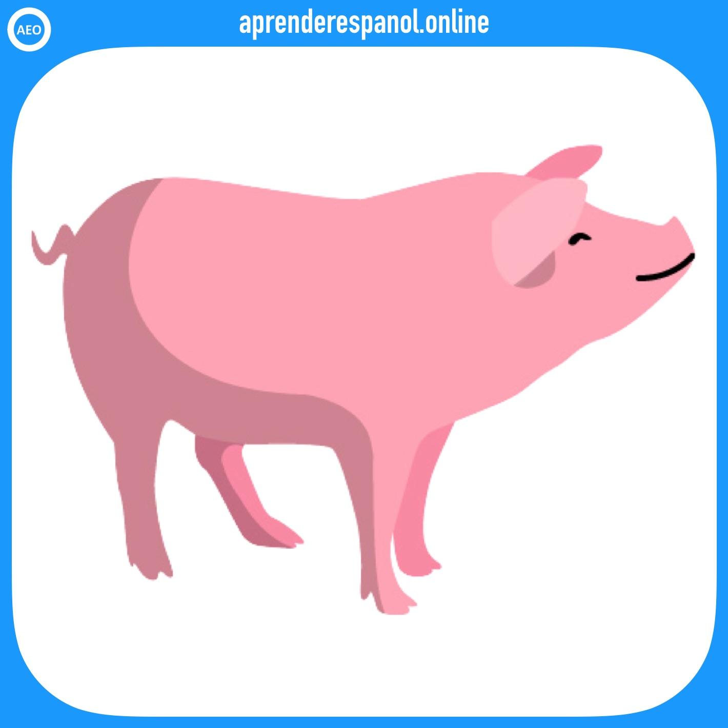 cerdo | animales en español | vocabulario de los animales en español