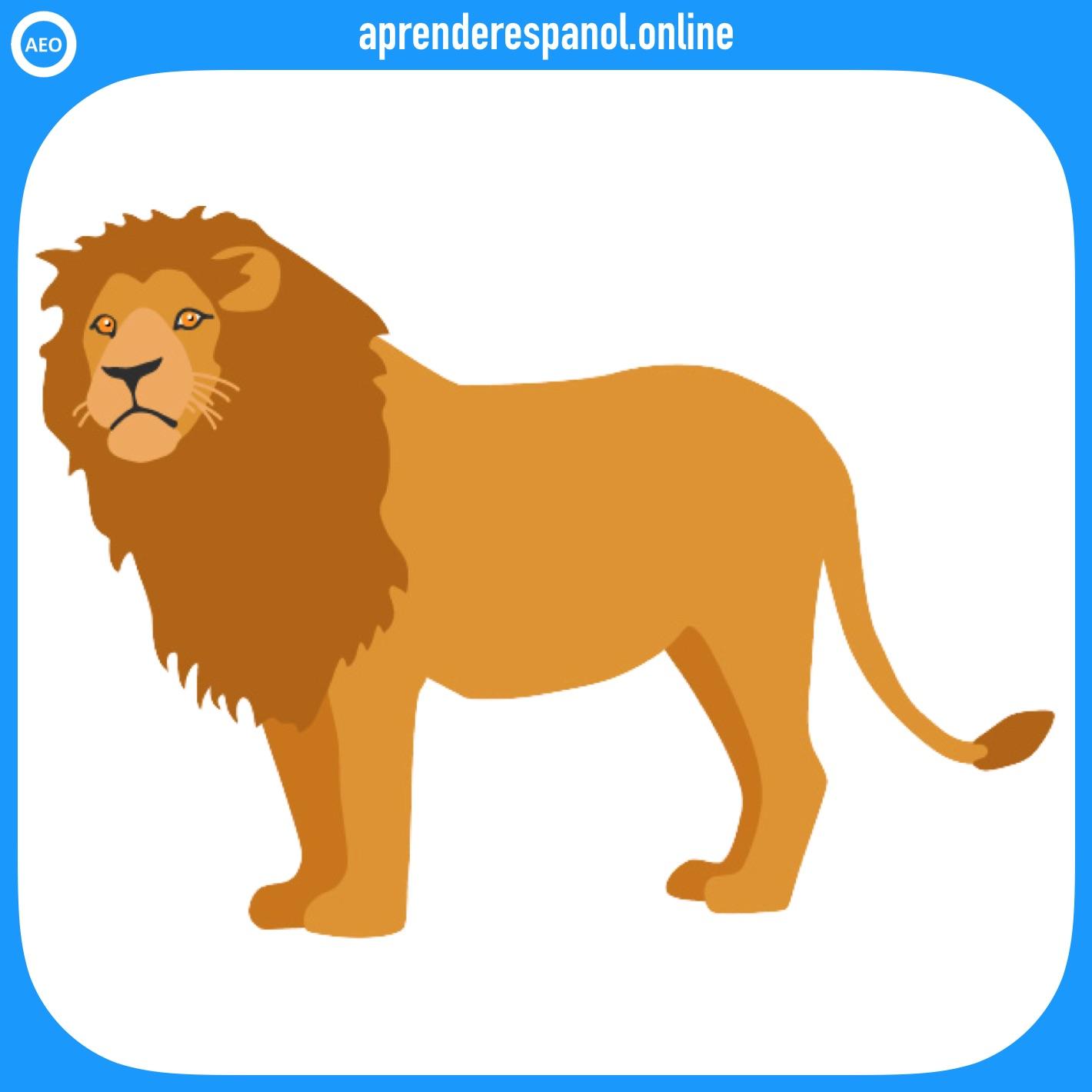 león | animales en español | vocabulario de los animales en español