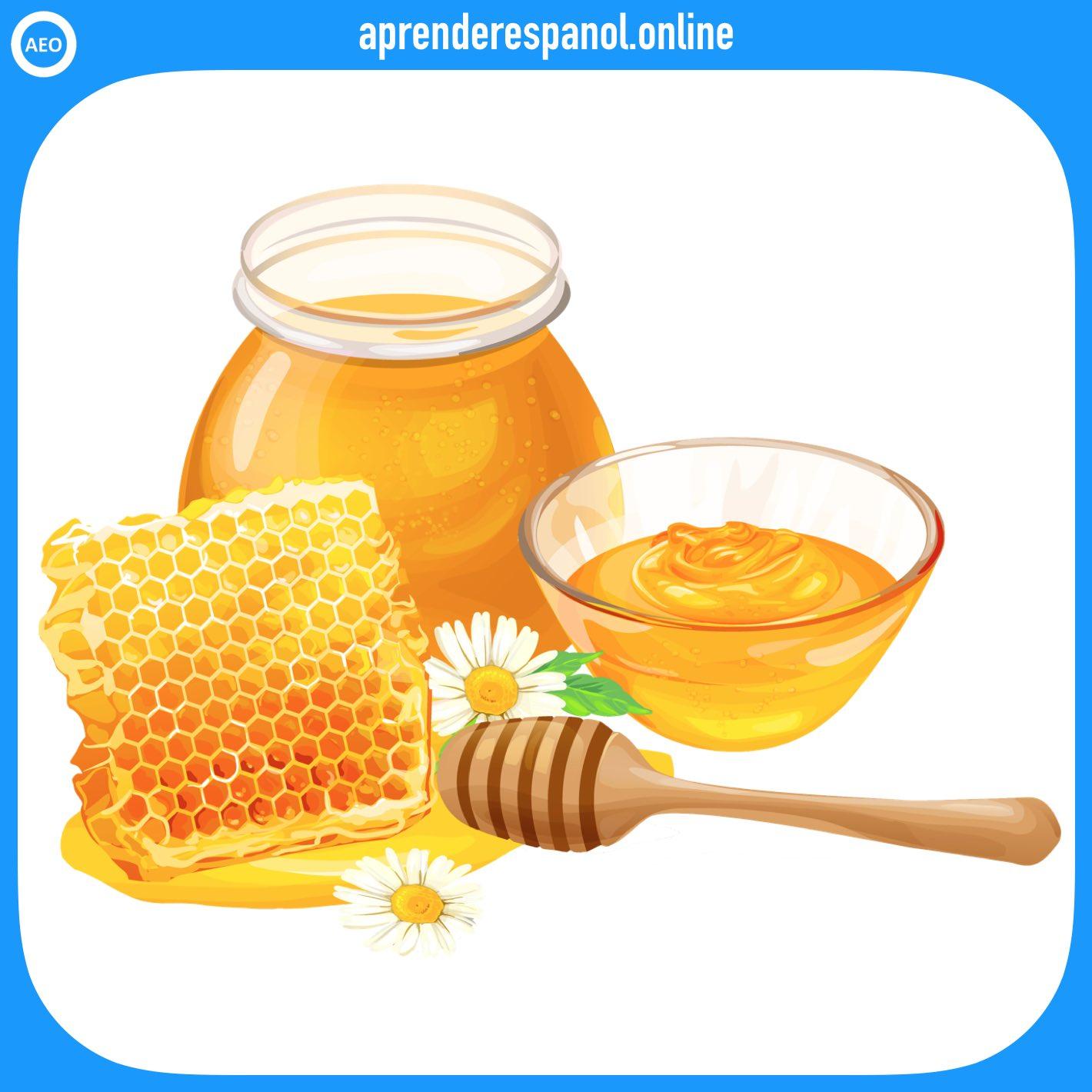 miel   alimentos en español   vocabulario de los alimentos en español