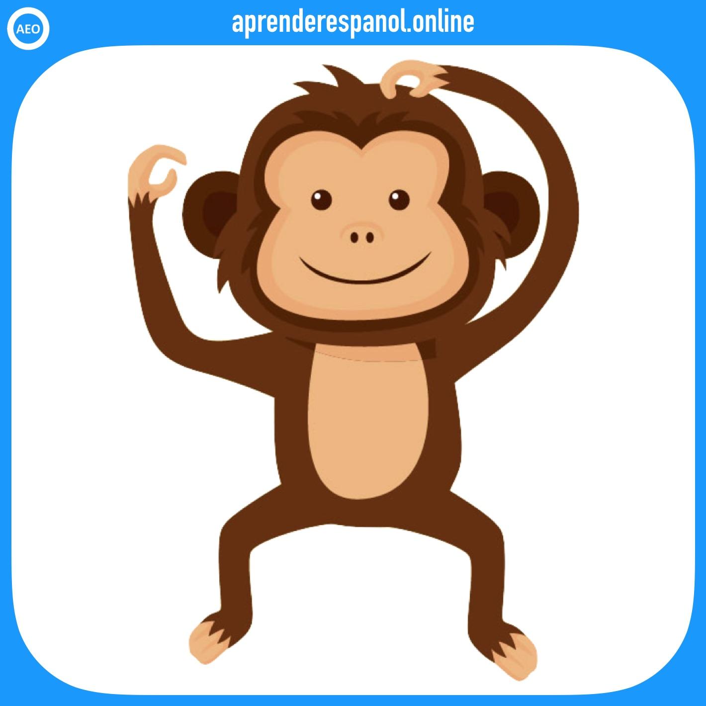 mono | animales en español | vocabulario de los animales en español