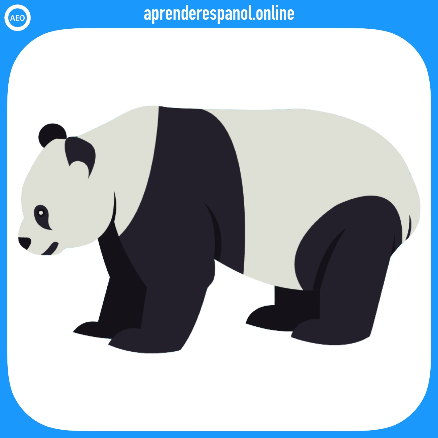 oso panda | animales en español | vocabulario de los animales en español