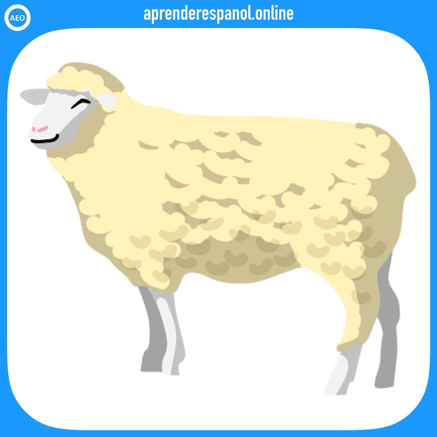 oveja | animales en español | vocabulario de los animales en español