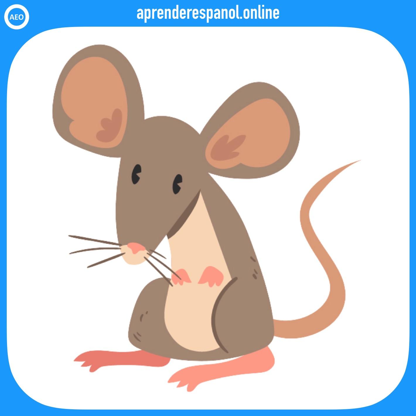 ratón | animales en español | vocabulario de los animales en español