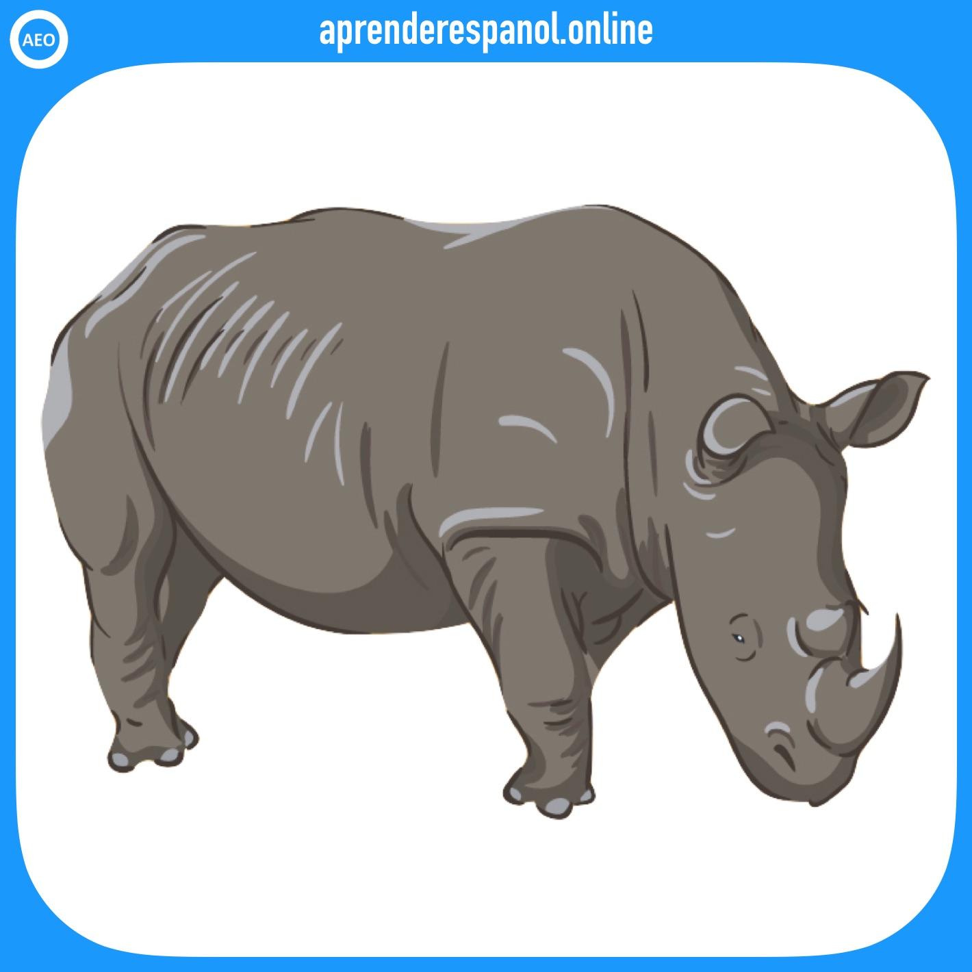 rinoceronte | animales en español | vocabulario de los animales en español