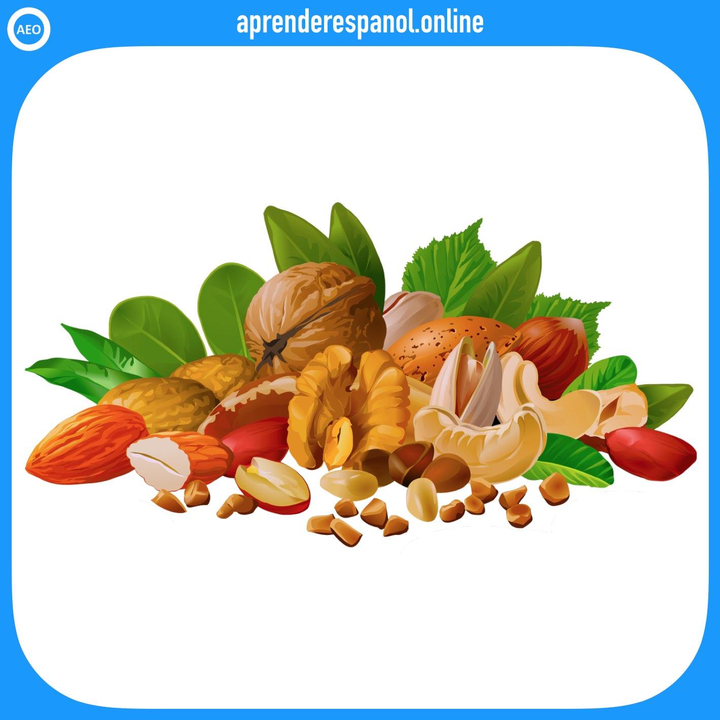 semillas   alimentos en español   vocabulario de los alimentos en español