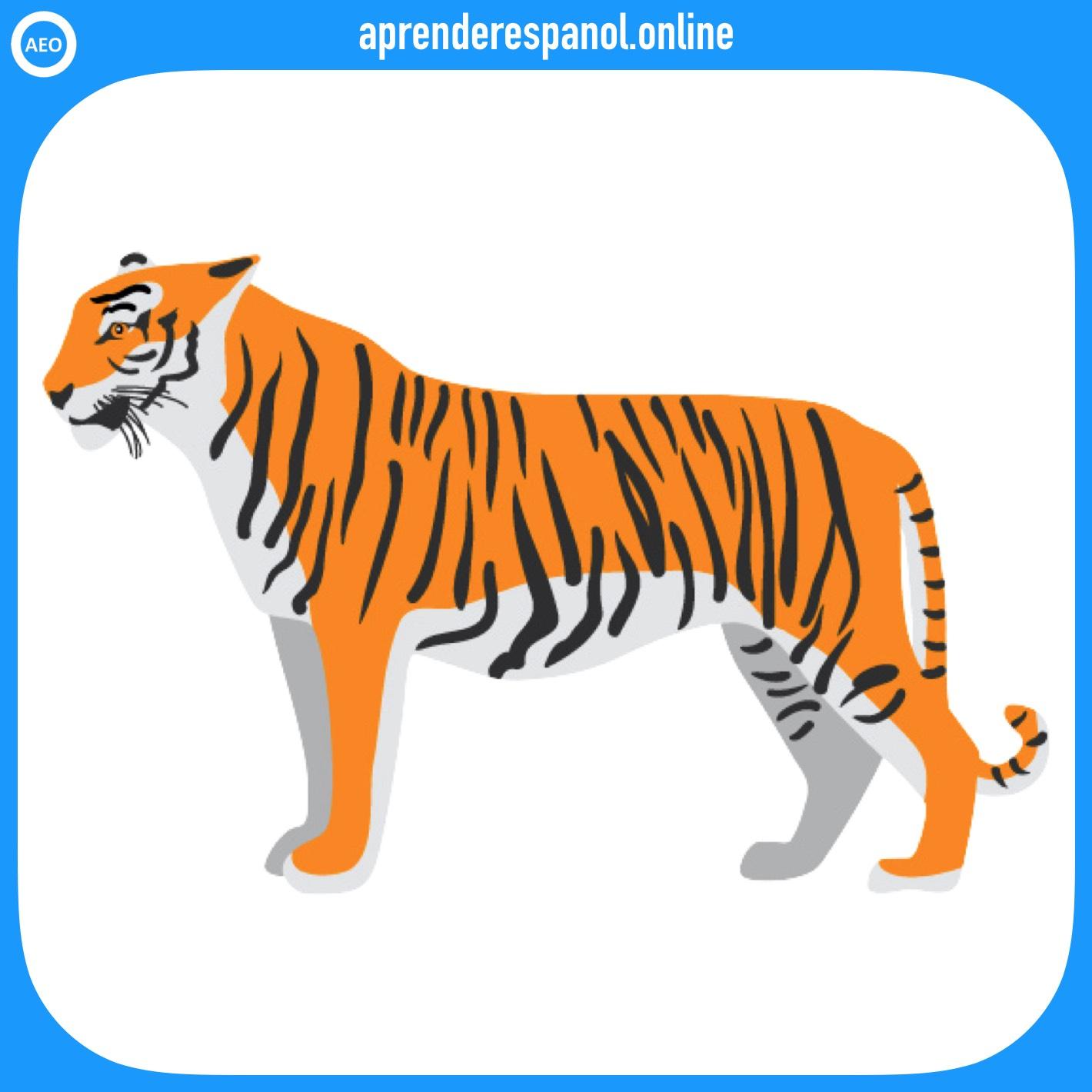 tigre | animales en español | vocabulario de los animales en español