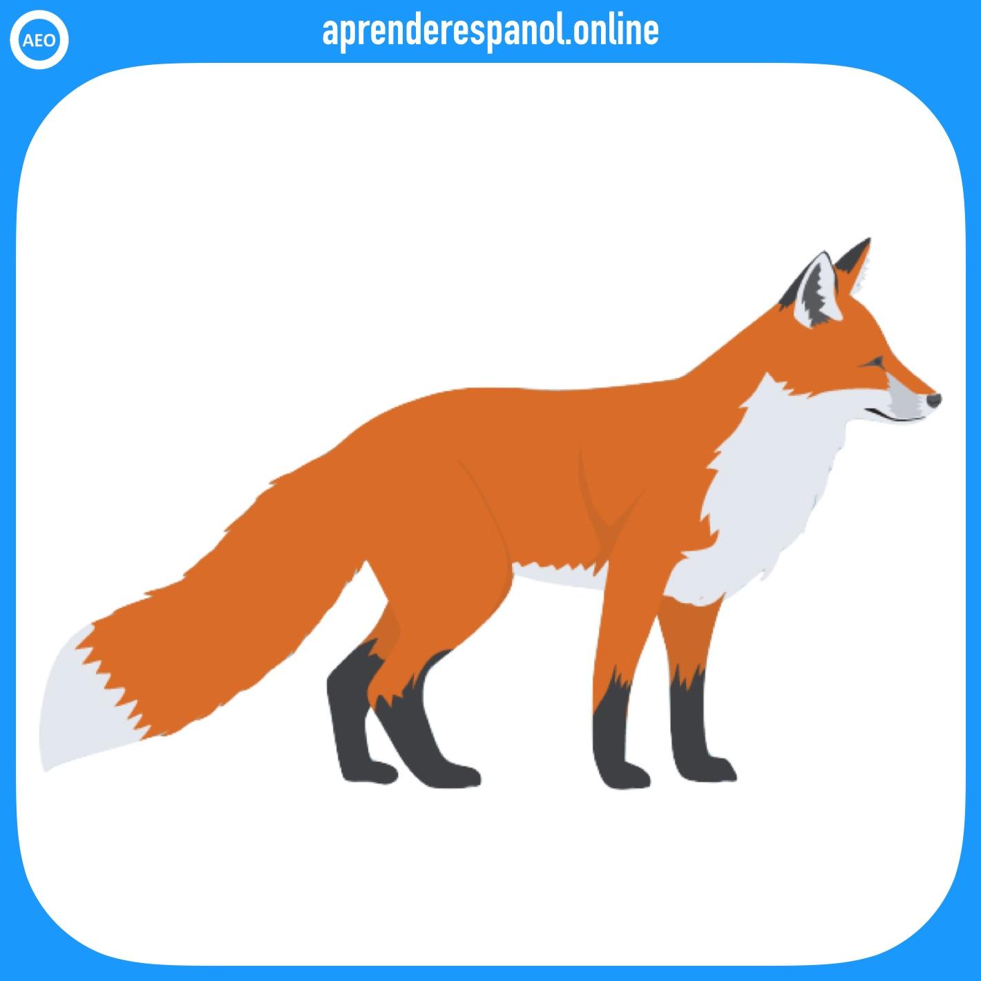 zorro | animales en español | vocabulario de los animales en español
